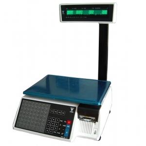 Весы SM-100_1