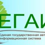 ЕГАИС лес: функционал, регистрация, работа в системе