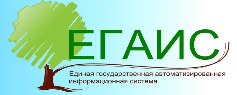 Егаис лес регистрация ип оправдательный документ в бухгалтерии