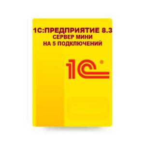 1С:Предприятие 8.3. Сервер МИНИ на 5 подключений_1