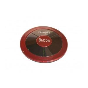 Кнопка вызова iKnopka APE310