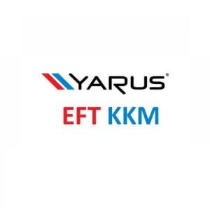 ПО Лицензия EFTKKM для ККМ ЯРУС2100