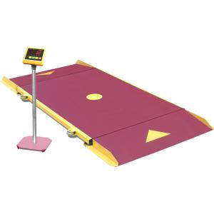 Весы платформенные ФизТех ВП-НЛ-1,5т