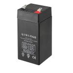 Аккумулятор для весов Cas 3FM4AH 6V4AH 20HR LS